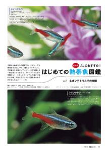 はじめての熱帯魚図鑑